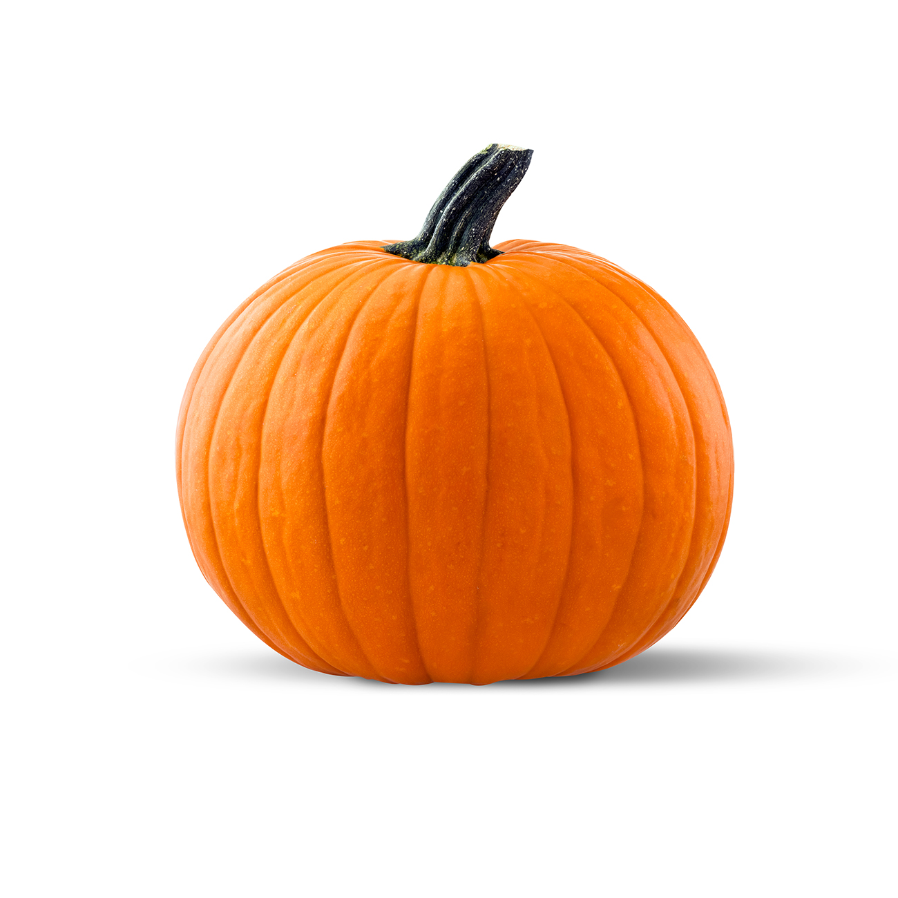 pumpkin,-golden-nugget.jpg